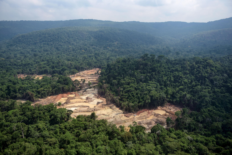 Terra Indígena Kayapó, Pará